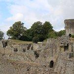 Chateau de Domfront Foto