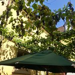 Billede af Restaurant Zum Weissen Lamm