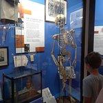 Foto Royal London Hospital Museum