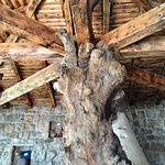 Фотография Stara Hercegovina