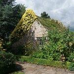 Bide-a-Wee Cottage Gardenの写真