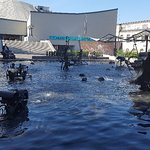 Foto de Tinguely-Brunnen