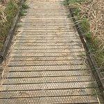 Photo de Norfolk Wildlife Trust Cley Marshes