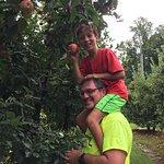 Foto Grandad's Apples