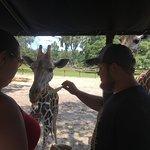 Foto de Giraffe Ranch