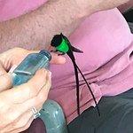 Foto di Rocklands Bird Sanctuary