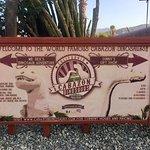 Bild från Cabazon Dinosaurs