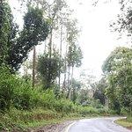 On the way to Talakaveri