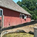 Foto Living History Farms