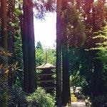 Foto van Muroji Temple