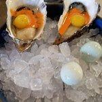 Foto de Hog Island Oyster Company