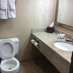 盐湖城市区红狮酒店照片