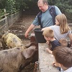 Heeley City Farm Foto