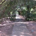 Bundaberg Botanic Gardens照片