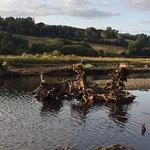 The Gearagh ภาพถ่าย