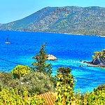 Foto de Agios Petros Beach
