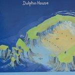 Foto de Dolphin House Reef (Sha'ab Samadai)