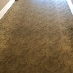 """If the carpet could talk it would say """"i'm feeling dirty"""""""
