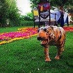 Bilde fra The Oberoi Vanyavilas Wildlife Resort, Ranthambhore