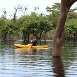 写真Amazon Tupana Lodge枚