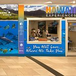 Iruka Hawaii Experiences照片