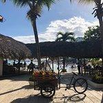 Фотография Pelicano Beach Club