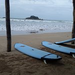 Foto de Kiss Lanka Surf Tours