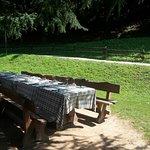 Photo of Agriturismo Ferdy