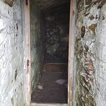 Bilde fra Elliston's Root Cellars