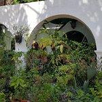 Photo of Parque Botanico El Majuelo