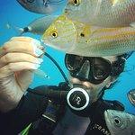 Billede af Kos Divers