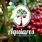 Aquiares Coffee & Community Experience