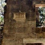 Billede af Bulow Plantation Ruins Historic State Park