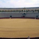 De immense arena