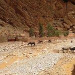 Foto van Marruecos Con Tus Ojos