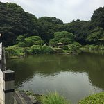 Photo of Shinjuku Gyoen National Garden