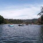 Foto di Kodaikanal Lake