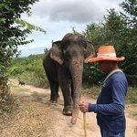 Фотография Hutsadin Elephant Foundation