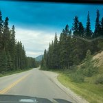 Bow Valley Parkway Photo