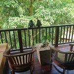 Nandini  jungel resort bali