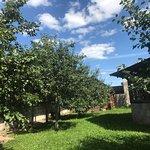 Photo de Italian Farm La Fattoria Little Italy