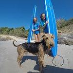 Simon , Our Dog,  Surf guard Dog