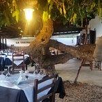 La Tortuga ,lauschig unter Feigenbäumen
