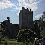 Blarney Tours paddywagon