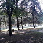 Ảnh về Parco Forlanini