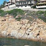 Φωτογραφία: Spiaggia Campese
