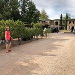 Casa Rondena grounds