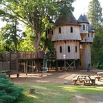 Photo of Birr Castle Gardens