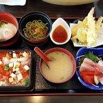Wanko & Sashimi