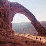 Zdjęcie Corona Arch